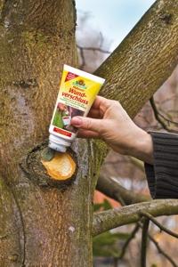 Malusan Wundverschluss - 275ml ist ein Wundverschlussmittel zur Wundbehandlung für alle Obst- und Ziergehölze.