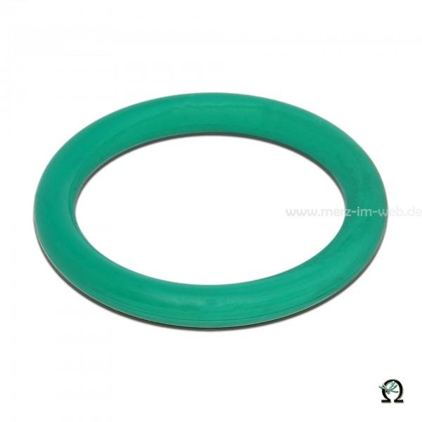 GLORIA O-Ring 610266