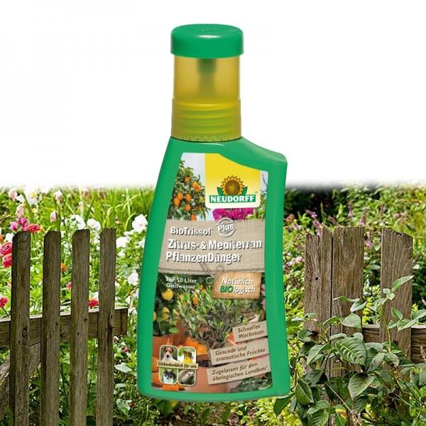 BioTrissol Plus Zitrus- & MediterranpflanzenDünger 250ml