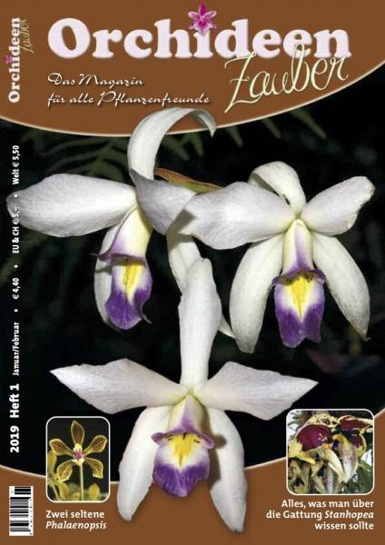 Orchideenzauber 2019 Heft 1 mit einem Artikel über Stanhopea