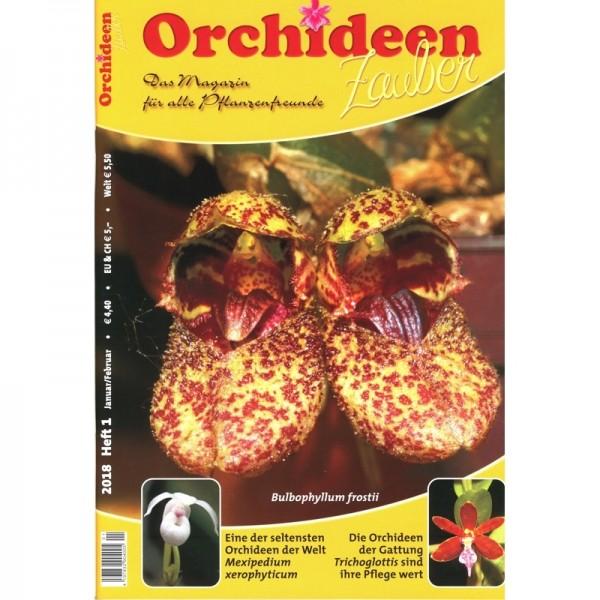 Orchideenzauber 2018 Heft 1